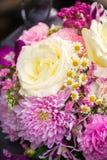 Grupp av blommor - för lilor och vita blommor för rosa färger, Royaltyfria Bilder