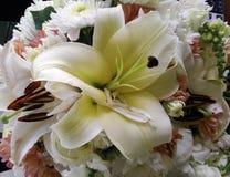 Grupp av blommor i trädgårds- /decoration Arkivfoton