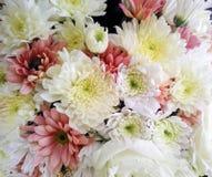 Grupp av blommor i trädgårds- /decoration Arkivbilder