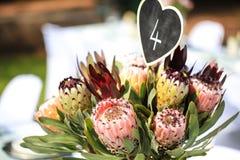 Grupp av blommor som tabellgarnering Royaltyfri Foto
