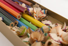 Grupp av blyertspennor Royaltyfri Foto
