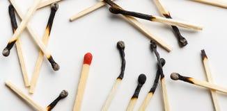 Grupp av brända matcher med en oanvänd matchstick arkivfoto
