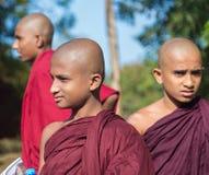 Grupp av buddistiska munkar som besöker det Sigiriya komplexet Fotografering för Bildbyråer
