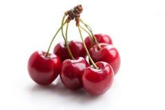 Grupp av Cherry Vit bakgrund Royaltyfria Bilder