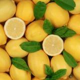 Grupp av citroner Arkivbilder