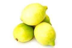 Grupp av citroner Royaltyfri Foto