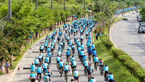 Grupp av cyklisten Royaltyfri Fotografi