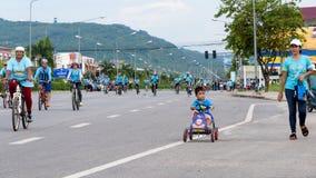 Grupp av cyklisten på det yrkesmässiga loppet Royaltyfria Bilder