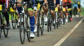 Grupp av cyklisten på det yrkesmässiga loppet Royaltyfri Bild