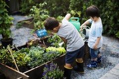 Grupp av dagisungar som lär att arbeta i trädgården utomhus arkivbilder