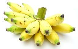 Grupp av damen Fingers Banana Arkivbild