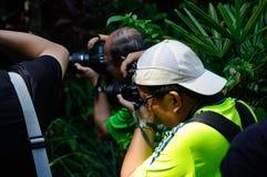 Grupp av den asiatiska yrkesmässiga fotografen på utomhus- arbetsuppgift offentligt Fotografering för Bildbyråer