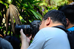 Grupp av den asiatiska yrkesmässiga fotografen på utomhus- arbetsuppgift offentligt Arkivfoto