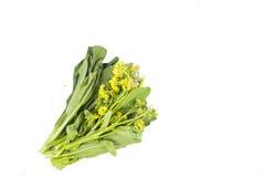 Grupp av den blom- choy summagräsplangrönsaken som är populär bland bergskammen Royaltyfri Foto