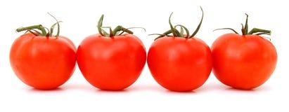 Körsbärsröd tomat Arkivbild