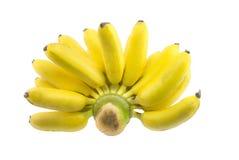 Grupp av den organiska bananen Fotografering för Bildbyråer