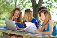 Grupp av den unga deltagaren som använder den utomhus- bärbar dator royaltyfri fotografi