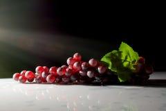 Grupp av druvor i solen på ett mörker Royaltyfri Fotografi