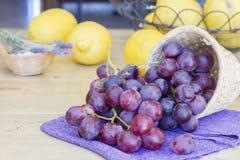 Grupp av druvor som är klara att äta Arkivbild