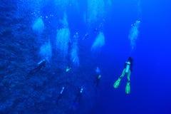 Grupp av dykare Arkivbilder
