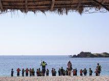 Grupp av dykare i havet royaltyfri foto