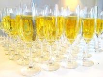 Grupp av exponeringsglas med champagne Royaltyfri Fotografi