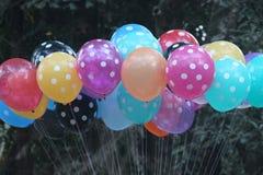 Grupp av färgrika ballonger som tillsammans binds Arkivfoton