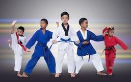 Grupp av fem 5 röda blåa ungar Taekwondo för bälte II royaltyfri bild