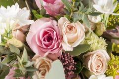 Grupp av flerfärgade blommor Royaltyfria Foton
