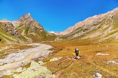 Grupp av fotvandrare i berget Royaltyfria Bilder