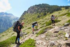 Grupp av fotvandrare i berget Royaltyfria Foton
