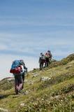 Grupp av fotvandrare i berget Royaltyfri Foto
