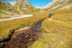 Grupp av fotvandrare i berget Royaltyfri Bild