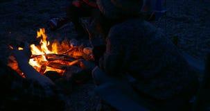 Grupp av fotvandrare som grillar marshmallower nära lägereld 4k arkivfilmer