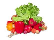 Grupp av frukter och grönsaker med grönska Royaltyfria Bilder