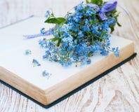 Grupp av glömma-mig-nots blommor Fotografering för Bildbyråer