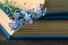 Grupp av glömma-mig-nots blommor och mycket gammal bok Royaltyfri Foto