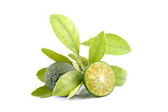 Grupp av grön calamansi och blad som används i stället för citronen som isoleras på vit bakgrund royaltyfria bilder
