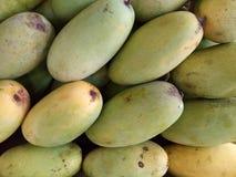 Grupp av grön omogen mangofrukt arkivfoto