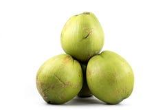 Grupp av gröna kokosnötfrukter royaltyfri bild