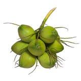 Grupp av gröna kokosnötter Royaltyfria Foton