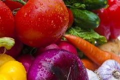 Grupp av grönsaker Fotografering för Bildbyråer