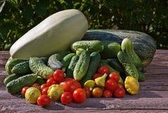 Grupp av grönsaker på tabellen Royaltyfria Foton