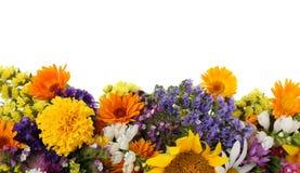 Grupp av härliga lösa blommor royaltyfri foto