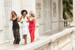 Grupp av härliga sexiga damer i eleganta klänningar på solig summe royaltyfria foton