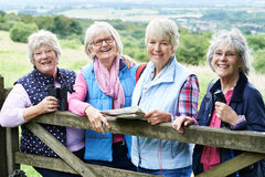 Grupp av höga kvinnliga vänner som fotvandrar i bygd royaltyfri bild
