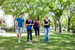 Grupp av högskolestudenter fotografering för bildbyråer