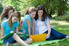 Grupp av högskolestudenter som tillsammans studerar Arkivfoton