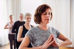 Grupp av högt folk som gör yogaövning i allaktivitetshusklubba royaltyfria foton
