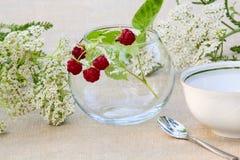 Grupp av hallon i en glass bunke Royaltyfria Foton